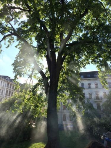 VJU-lighting-fotografie-19